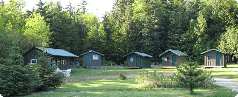 cabins media trout summer alaska public cabin use in national lake chugach forest